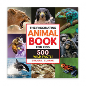 The Fascinating Animal Book For Kids Best Nonfiction Books For Kids